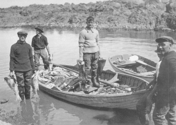 Fishing history of shetland for History of fishing
